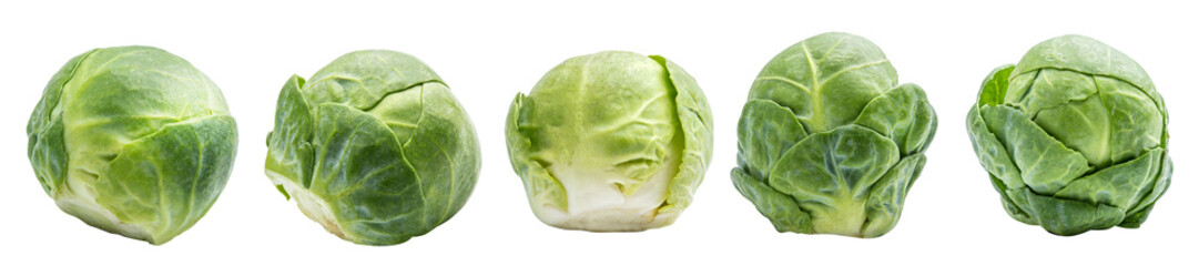 Photo sur Plexiglas Bruxelles Group of fresh brussels cabbage