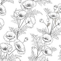 Pattern of poppy flowers on a white background. Vector illustration.