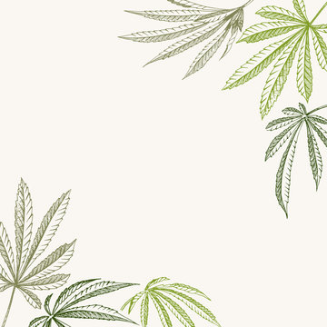 Vector outline corner background of hemp plant on a beige square cannabis texture