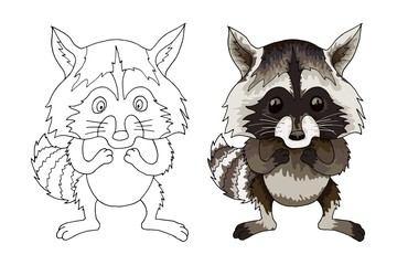 Raccoon funny animal cartoon character isolated coloration book