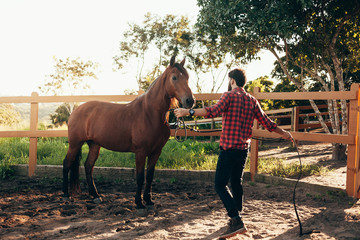 Man training his horse in the corral