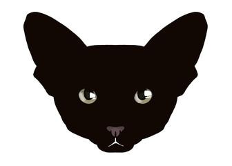 black oriental cat head