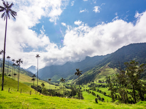 Beautiful day hiking scenery of Valle del Cocora in Salento, Colombia