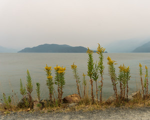 View at a Harrison Lake during forest fires in British Columbia Canada August 2018.