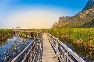 Beautiful landscape of wooden bridge walkway in swamp with grass field with blue sky mountain range background in Khao Sam Roi Yot National Park, Kui Buri District, Prachuap Khiri Khan, Thailand