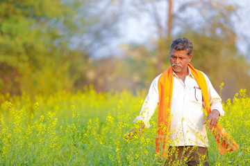 Indian farmer at black mustard field