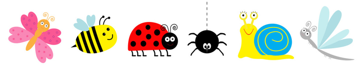 Ladybug, ladybird, bee, dragonfly, butterfly, spider, snail. Cute cartoon kawaii funny insect set line. White background. Isolated.