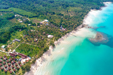 Aerial view blue sea white sand beach with coconut palm tree