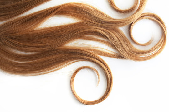 Blonde Curls hair isolated on white background. strand of light or red hair, hair care