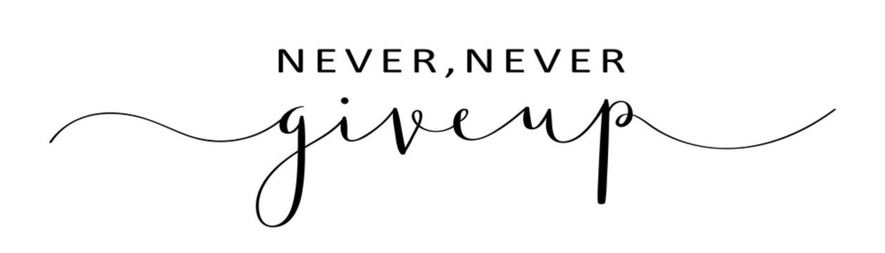 NEVER, NEVER GIVE UP brush calligraphy banner