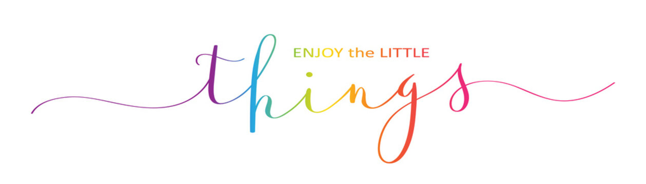 ENJOY THE LITTLE THINGS brush calligraphy banner