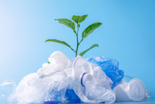 Plant grows among plastic garbage. Bottles and bags on blue background. Environmental protection and waste sorting