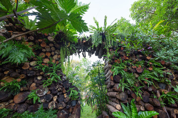Vertical gardening in harmony with nature.