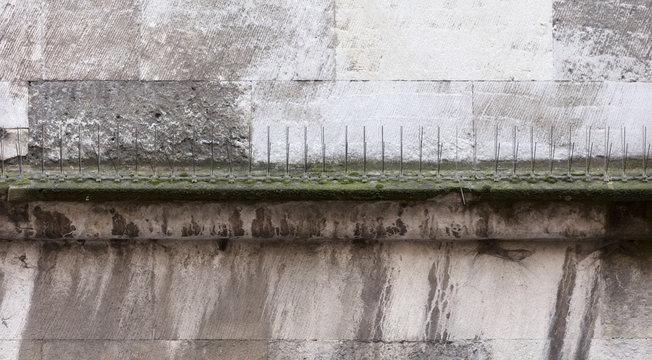 Anti bird spike steel stick on building structure