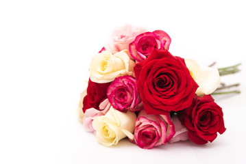 Assorted Roses isolated on white background