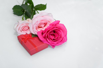 Three Roses and present box. - Valentines and 8 March Mother Women's Day concept.