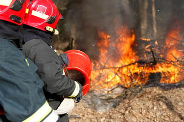Two firemen extinguish forest fire.Extinguish the fire. Work firefighter. Fight with fire. Dangerous profession
