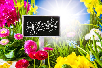 Sunny Spring Flower, Calligraphy Danke Means Thank You