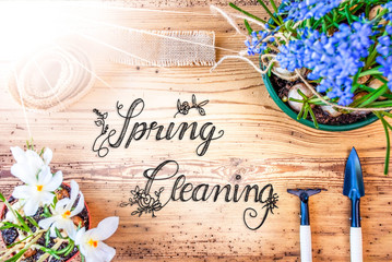 Sunny Spring Flowers, Calligraphy Spring Cleaning, Wooden Background