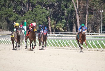 Horse Racing Out of the Turn