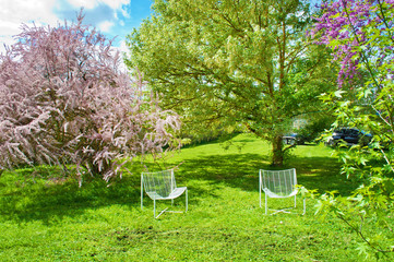 Two empty chairs among cut green grass