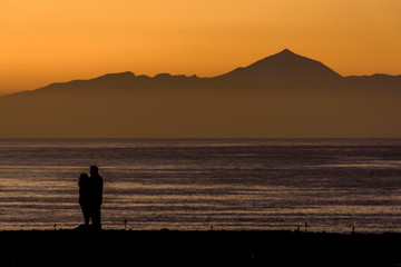 Silhouette Couple Standing By Sea Against Clear Sky During Sunset