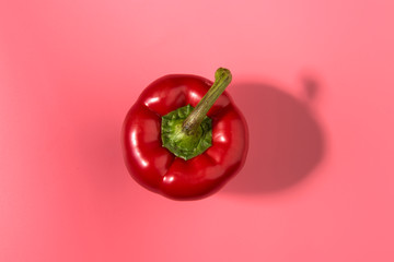 Red Bell pepper isolated on pink background. Minimal healthy food concept. Flat lay view with contrast shadow