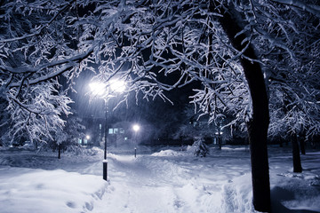 night park in the snow