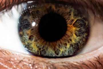 Fond de hotte en verre imprimé Iris Human eye close-up, macro. Beautiful iris and the pupil of the eye, healthy vision and identity