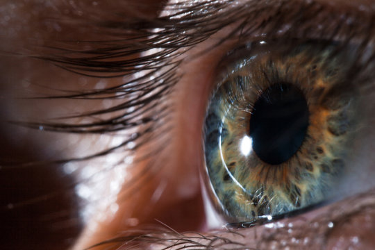 Human eye close-up, macro. Beautiful iris and the pupil of the eye, healthy vision and identity