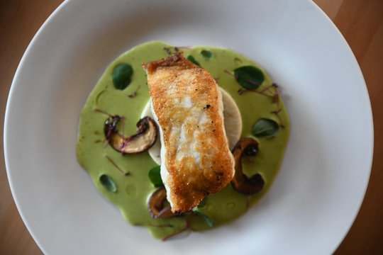 Pan seared trout fillet entree