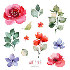 Handpainted watercolor set with peonies,flowers,braches and leaves. Bright texture.Perfect your project,greeting cards,wedding,Birthday cards,bouquets,wreaths,invitations,logos,wallpapers and more