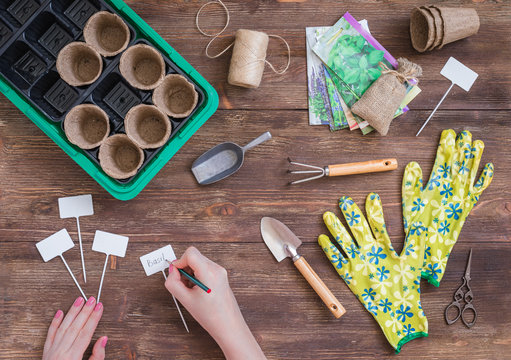 Stages of planting seeds, preparation, woman hands writing the plants names, gardeners tools and utensils