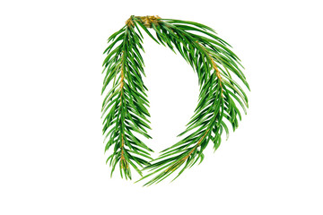 Letter D, English alphabet, collected from Christmas tree branches, green fir. Isolated on white background. Concept: ABC, design, logo, title, text, word
