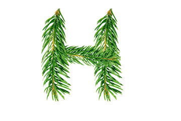 Letter H, English alphabet, collected from Christmas tree branches, green fir. Isolated on white background. Concept: ABC, design, logo, title, text, word