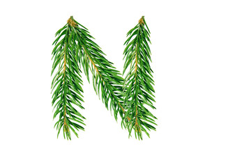 Letter N, English alphabet, collected from Christmas tree branches, green fir. Isolated on white background. Concept: ABC, design, logo, title, text, word