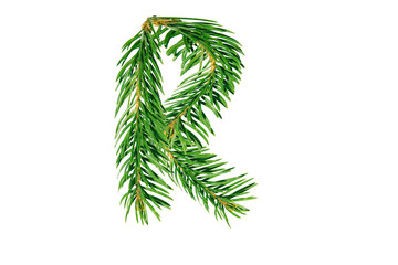 Letter R, English alphabet, collected from Christmas tree branches, green fir. Isolated on white background. Concept: ABC, design, logo, title, text, word
