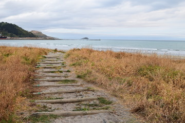 The sandy path leads up the beach towards the shore with a island of land in the distant waves in Gisborne, New Zealand.