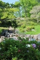 新緑に包まれた初夏の神戸・須磨離宮公園の滝