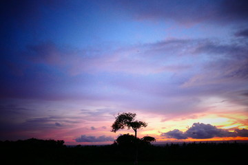 Photo picture a Beautiful natural delicious magnificent asian sunset sunrise.