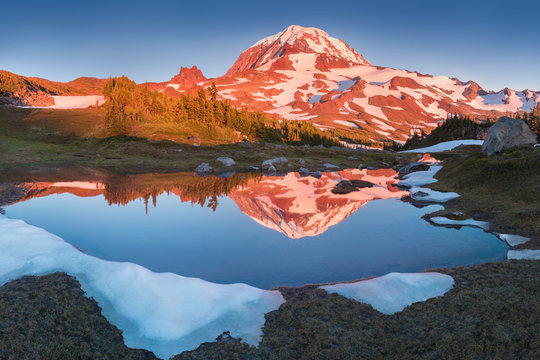 The beauty & tranquility of a summer evening at Mount Rainier National Park. Tall evergreen trees that line an alpine lake & blue sky are reflected on the calm water, Spray Park, Washington State, USA