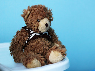toy teddy bear on blue background
