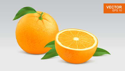 Realistic yellow orange vector illustration, icon. Whole and half slice of orange Fotomurales