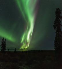 Denali Highway Auroras 2