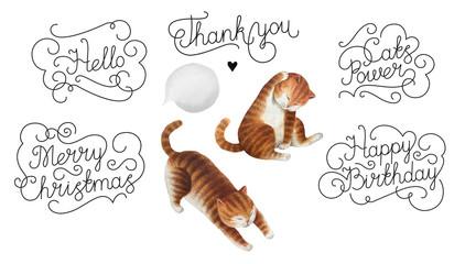 Set of watercolor cats