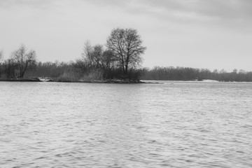 Black and white photography river bank.