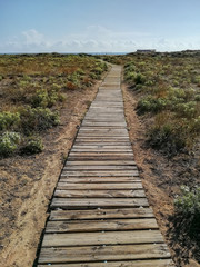 Wooden walkway to access the beach