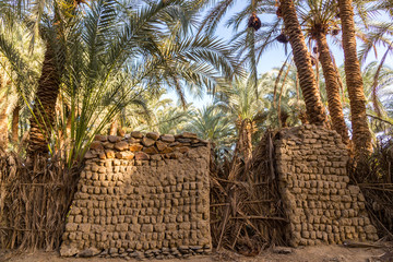 An old traditional building made of clay, thatched walls and adobe bricks in the gardens of date palms near El-Bawiti town, in oasis of Bahariya, Western Desert, Sahara, Egypt
