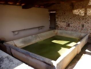 lavoir ancien avec bassin plein en pierre, margelle et banc fixé au mur