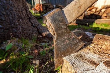 Travel, adventure, camping gear, outdoors items. Axe in stump. Axe ready for cutting timber. Woodworking tool. Lumberjack axe in wood, chopping timber